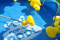 055 hook-a-duck